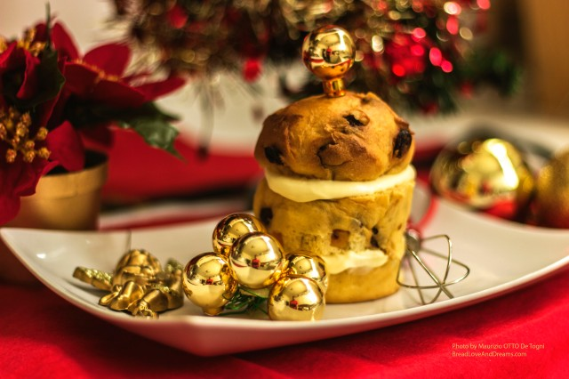 My Family's Christmas Recipes : Panettone - Homemade Italian Panettone (Dessert)