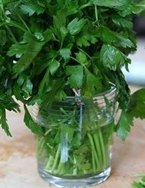 Tip For Storing Fresh Italian Parsley