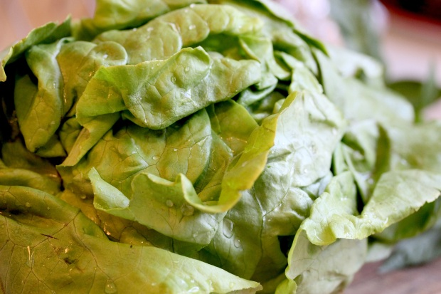LettuceSoup_BLAD blog - 15 copy